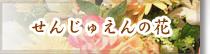 花束プレゼント フラワーギフト アレンジメント 名古屋市 瑞穂区 花せんじゅえん せんじゅえんの花
