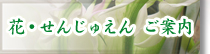 花束プレゼント フラワーギフト アレンジメント 名古屋市 瑞穂区 花せんじゅえん 花・せんじゅえん ご案内